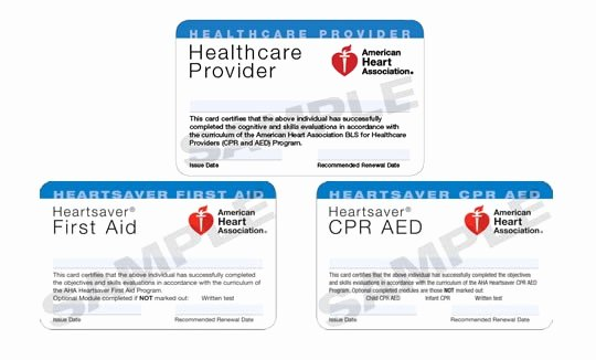 Nsc Cpr Course Certificate Template Lovely Cpr Florida Replacement Cpr Aed Bls First Aid Pals Acls