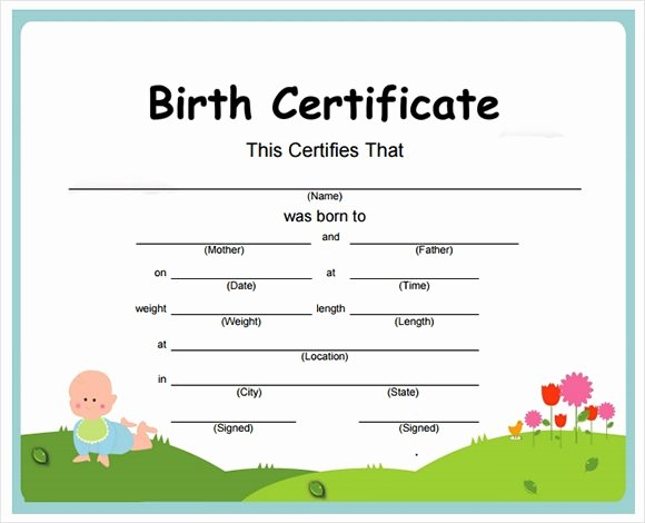 Official Birth Certificate Templates Luxury Free 12 Birth Certificate Templates In Free Examples
