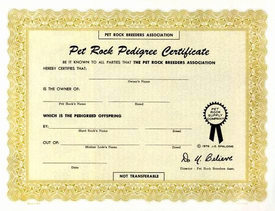 Old Birth Certificate Template Beautiful Pet Rock Supply Pany original Pet Rock Certificate