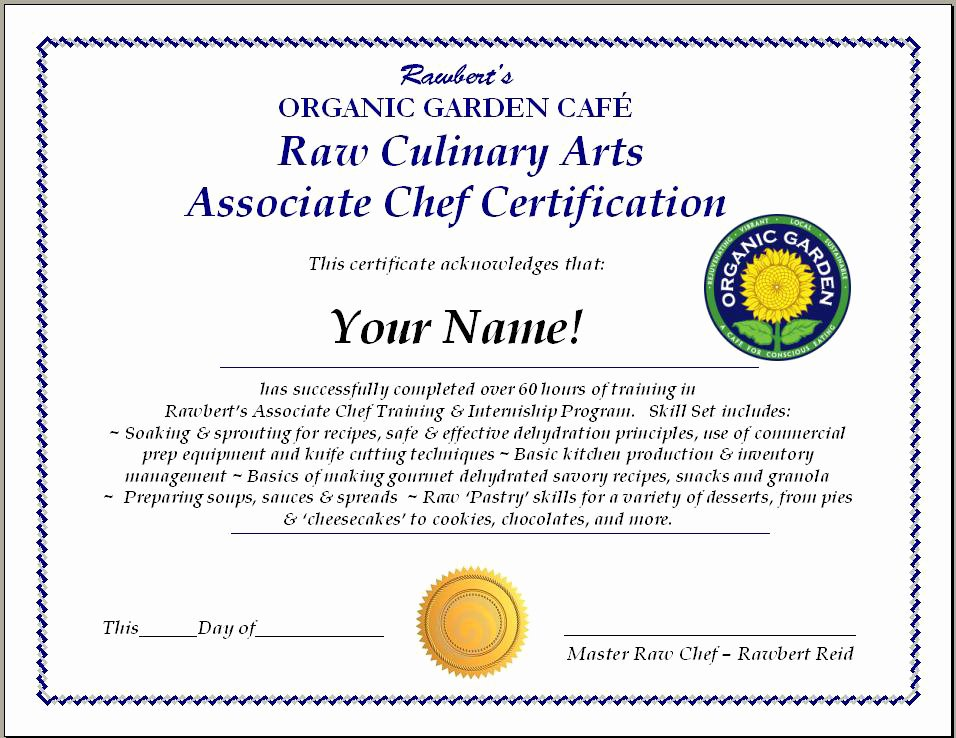 26 images of chef certificate template 6731