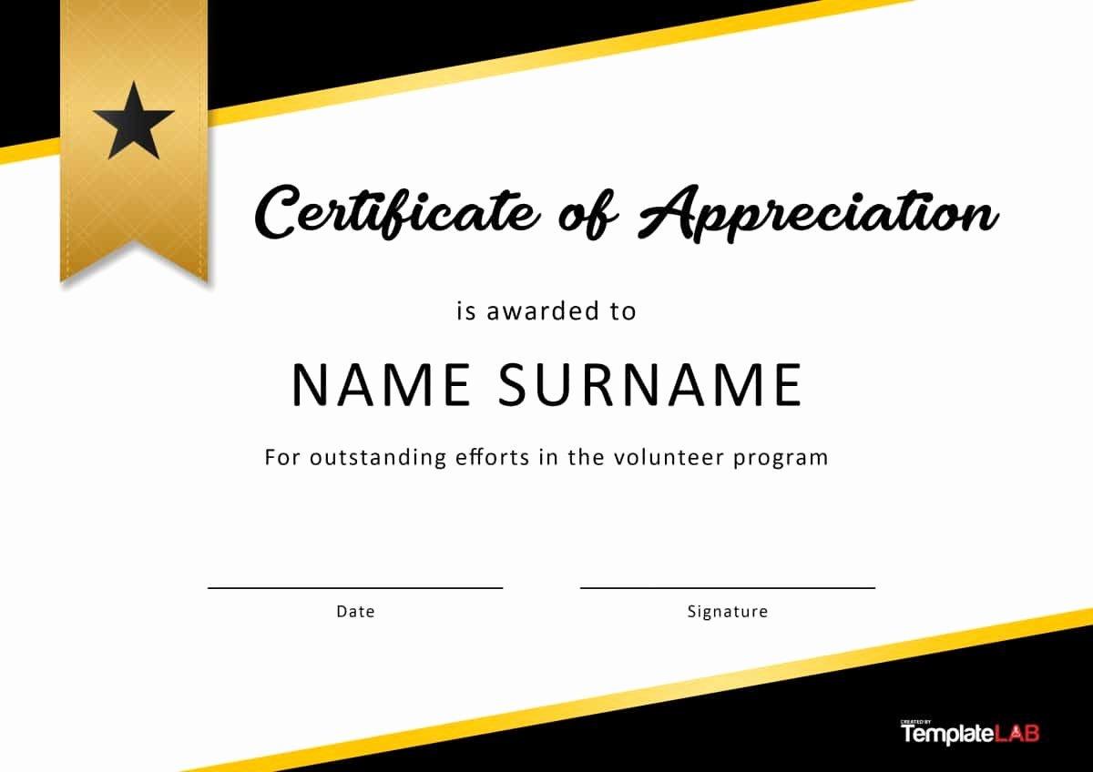Pastor Appreciation Certificate Template Free Elegant Sample Certificate Appreciation Munity Service