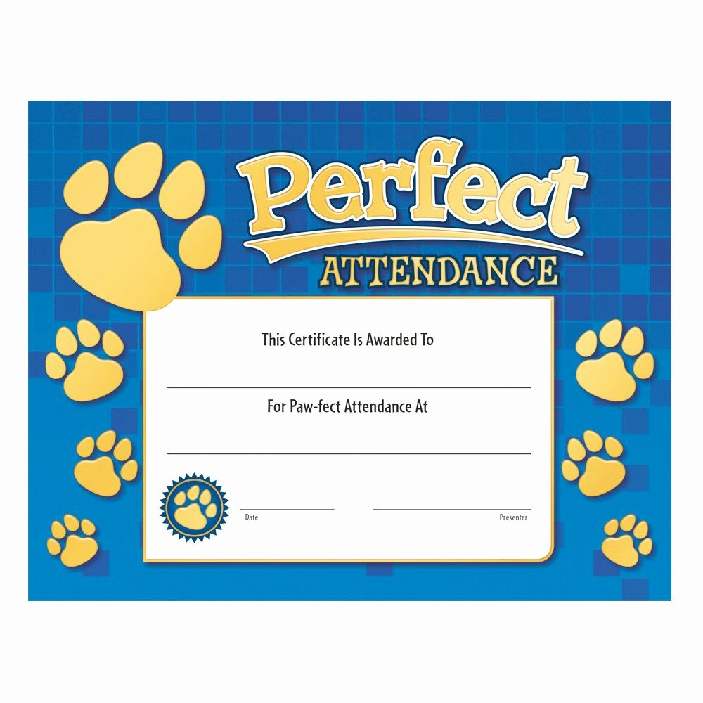 Perfect attendance Award Certificate Beautiful Perfect attendance Paw Design Gold Foil Stamped Certificate