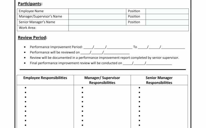 Performance Improvement Plan Template Excel New 28 Of Performance Improvement Plan Template Excel