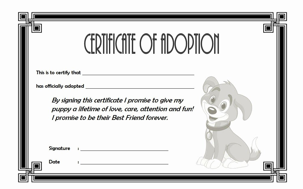 Pet Adoption Certificate Template Beautiful Pet Adoption Certificate Editable Templates