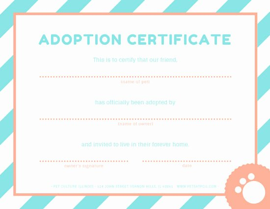 Pet Adoption Certificate Template Free Fresh Pet Adoption Certificate Templates by Canva