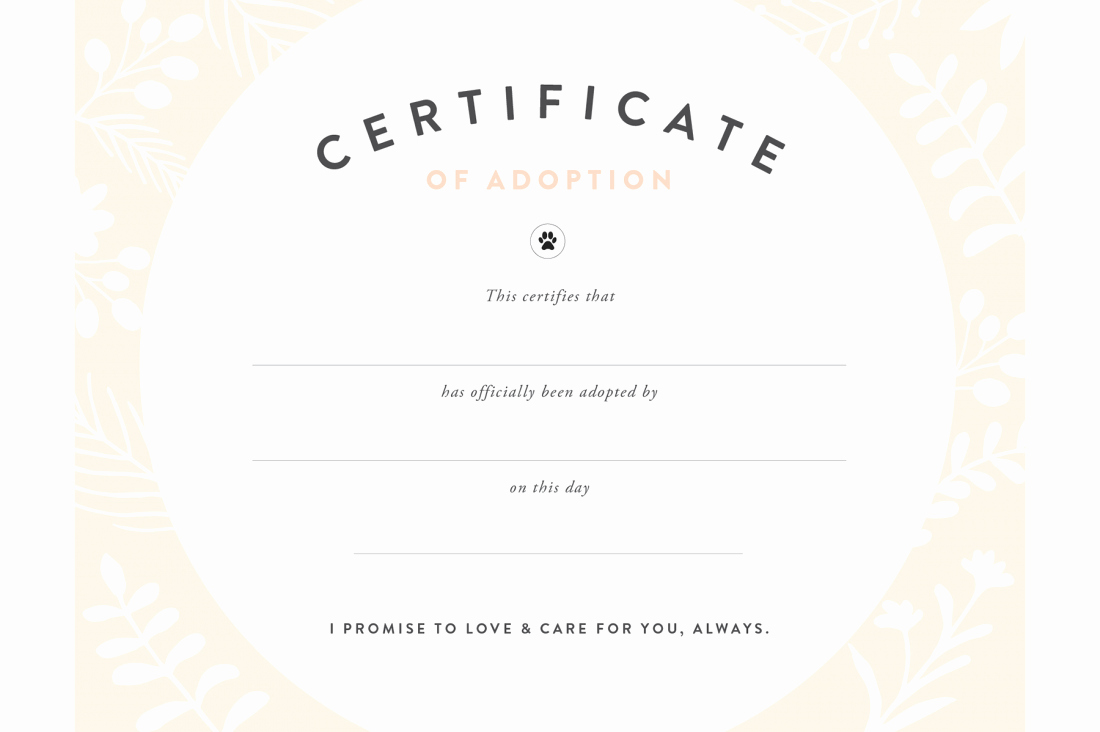 Pet Adoption Certificate Template Free Fresh Pretty Fluffy