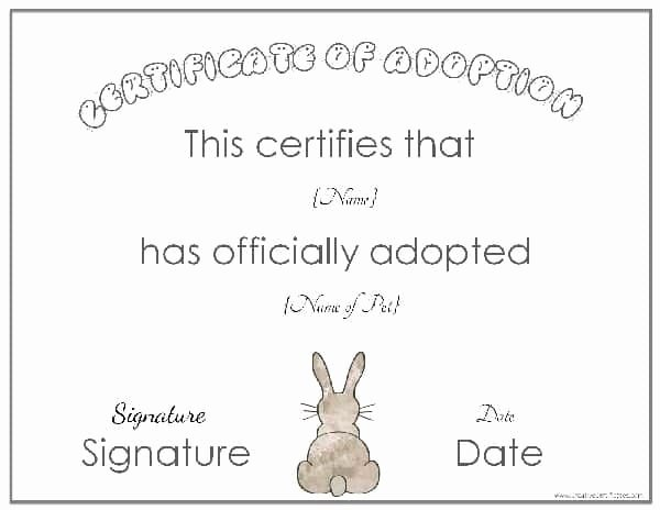 Pet Adoption Certificate Template Free Inspirational Free Adoption Certificate Template Customize Line