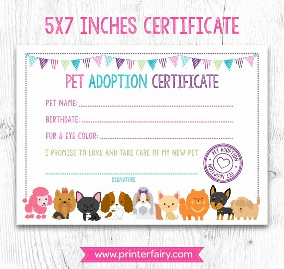Pet Adoption Certificate Template Free Lovely Pet Adoption Certificate Pet Adoption Birthday Party Puppy
