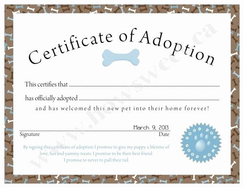 Pet Adoption Certificate Template Luxury Puppy Adoption Certificate Pink or Blue