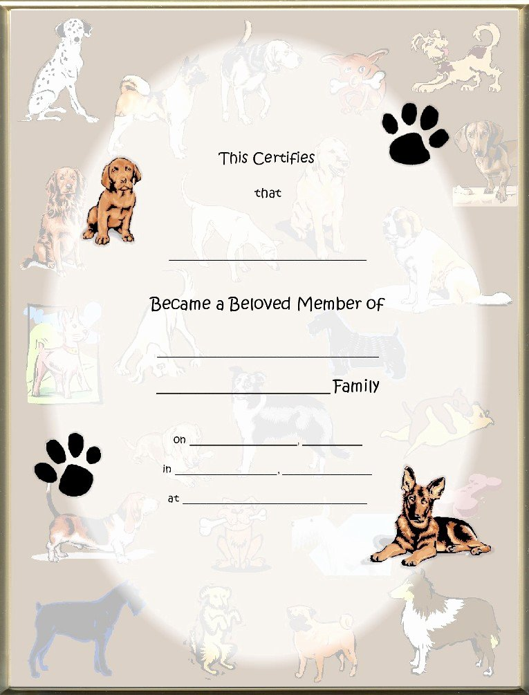 Pet Adoption Certificate Template Unique Dog Adoption Certificates Main Page