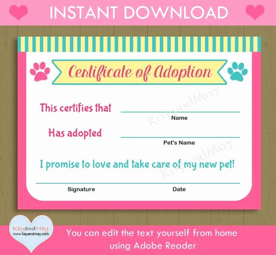 Pet Adoption Certificate Template Unique Printable Pet Adoption Certificate Animal theme Party Cat