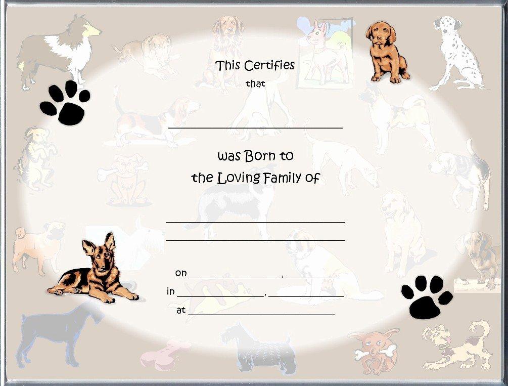 Pet Birth Certificate Template Unique Birth Certificate Blank Printable