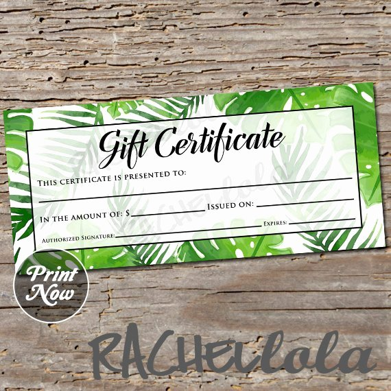 Photo Session Gift Certificate Template Best Of Tropical Gift Certificate Printable Template Graphy
