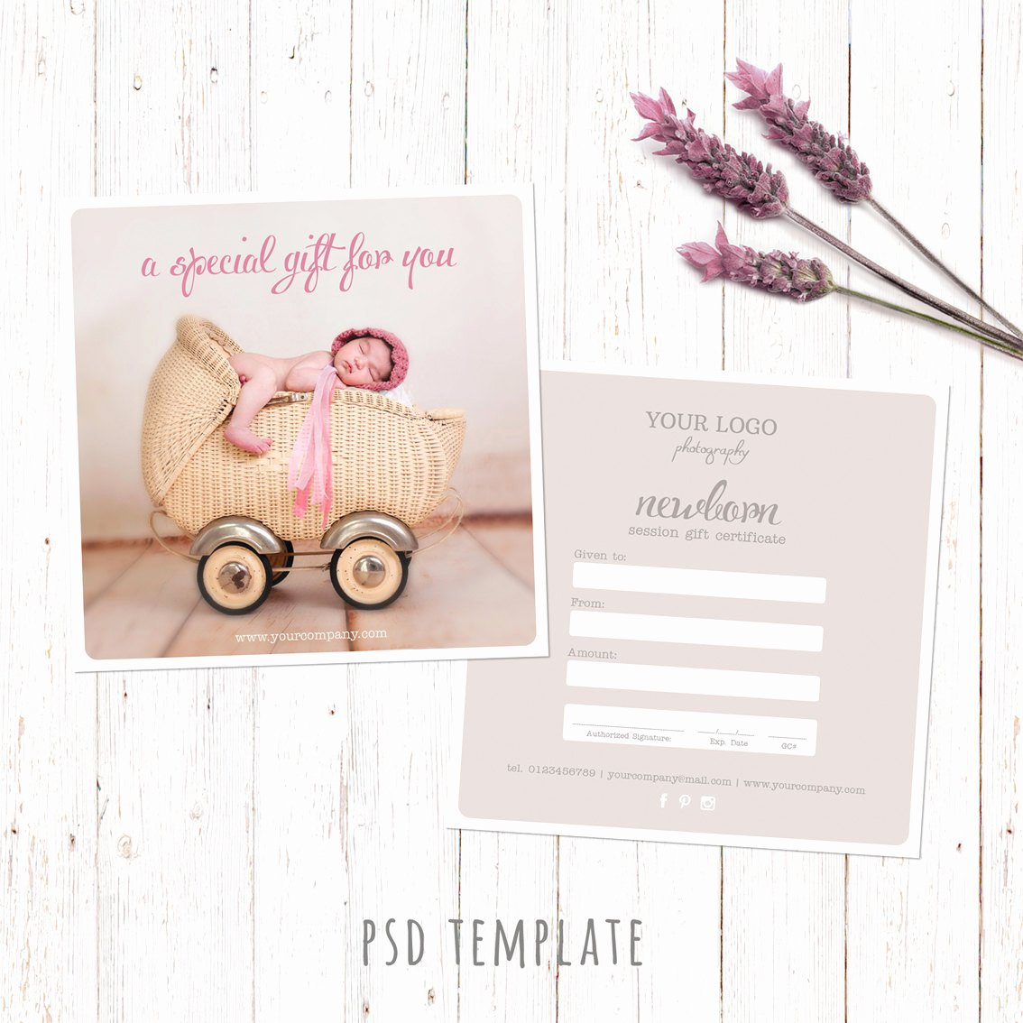 Photographer Gift Certificate Template Unique Gift Certificate Template Newborn Session Photography T