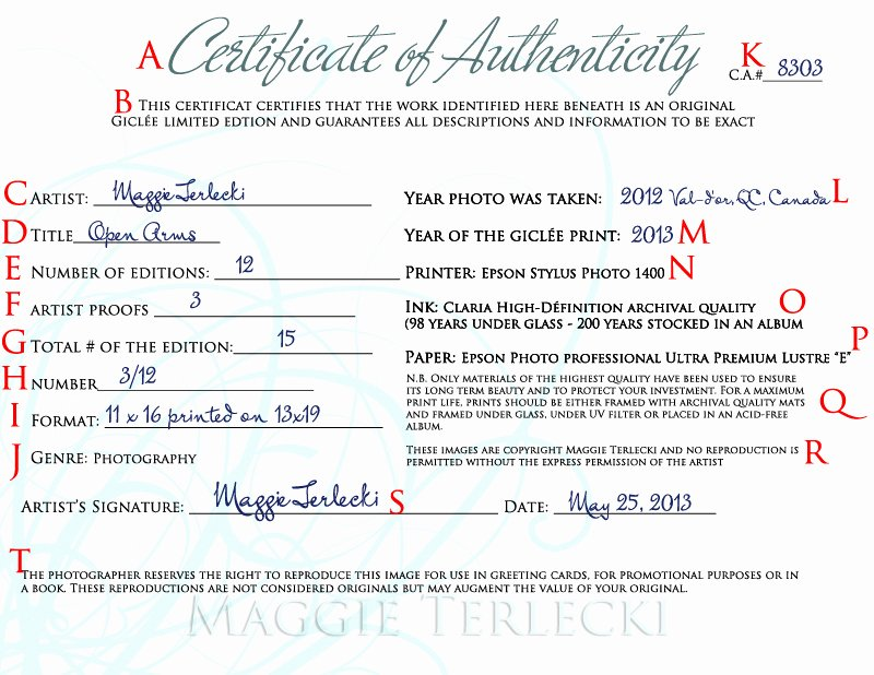 Photography Certificate Of Authenticity Template Fresh Certificate Authenticity Graphy