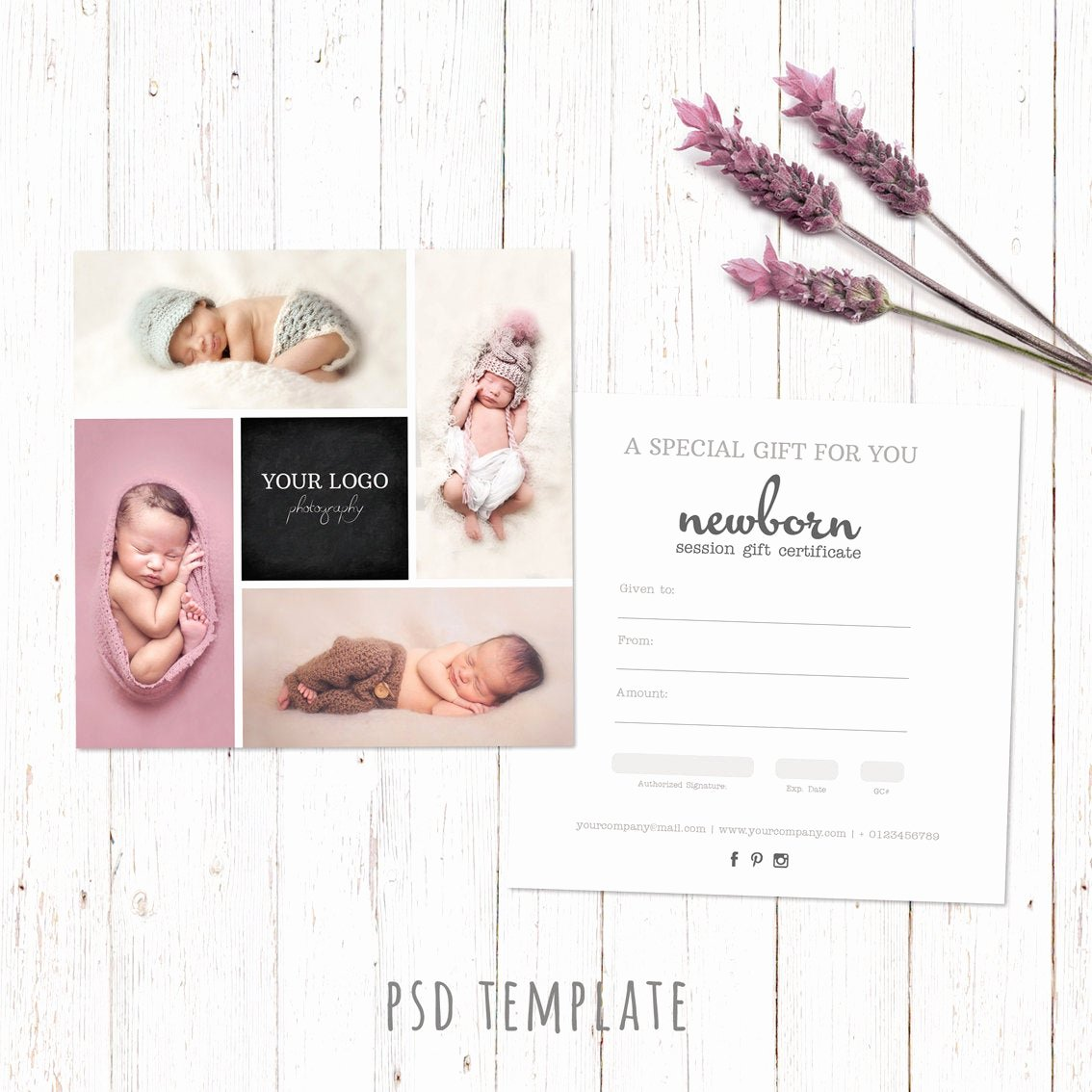 Photography Gift Certificate Template Free Download Luxury Gift Certificate Template Newborn Session Photography T