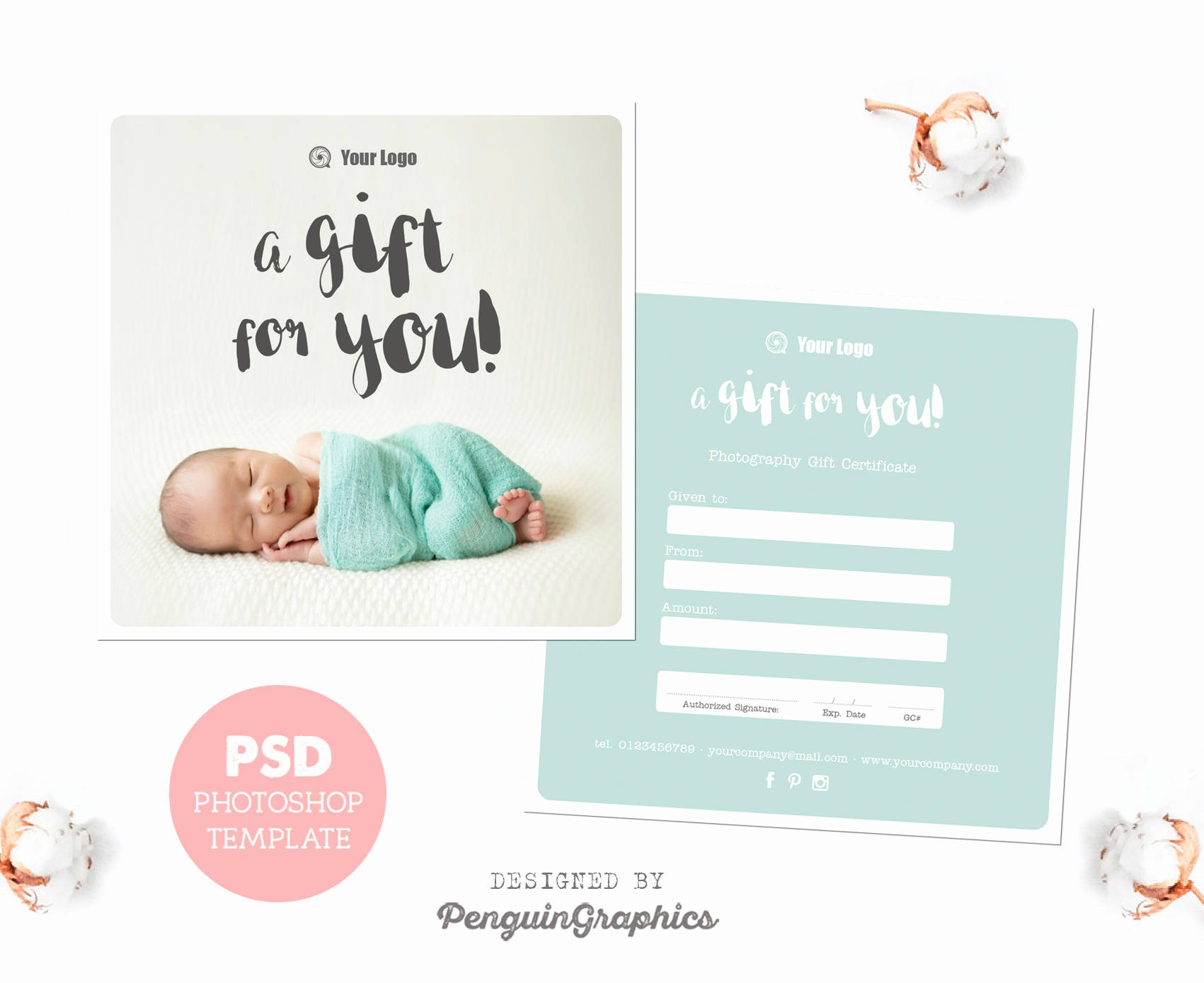 Photography Session Gift Certificate Template Elegant Gift Certificate Template Graphy Mini Session T Card