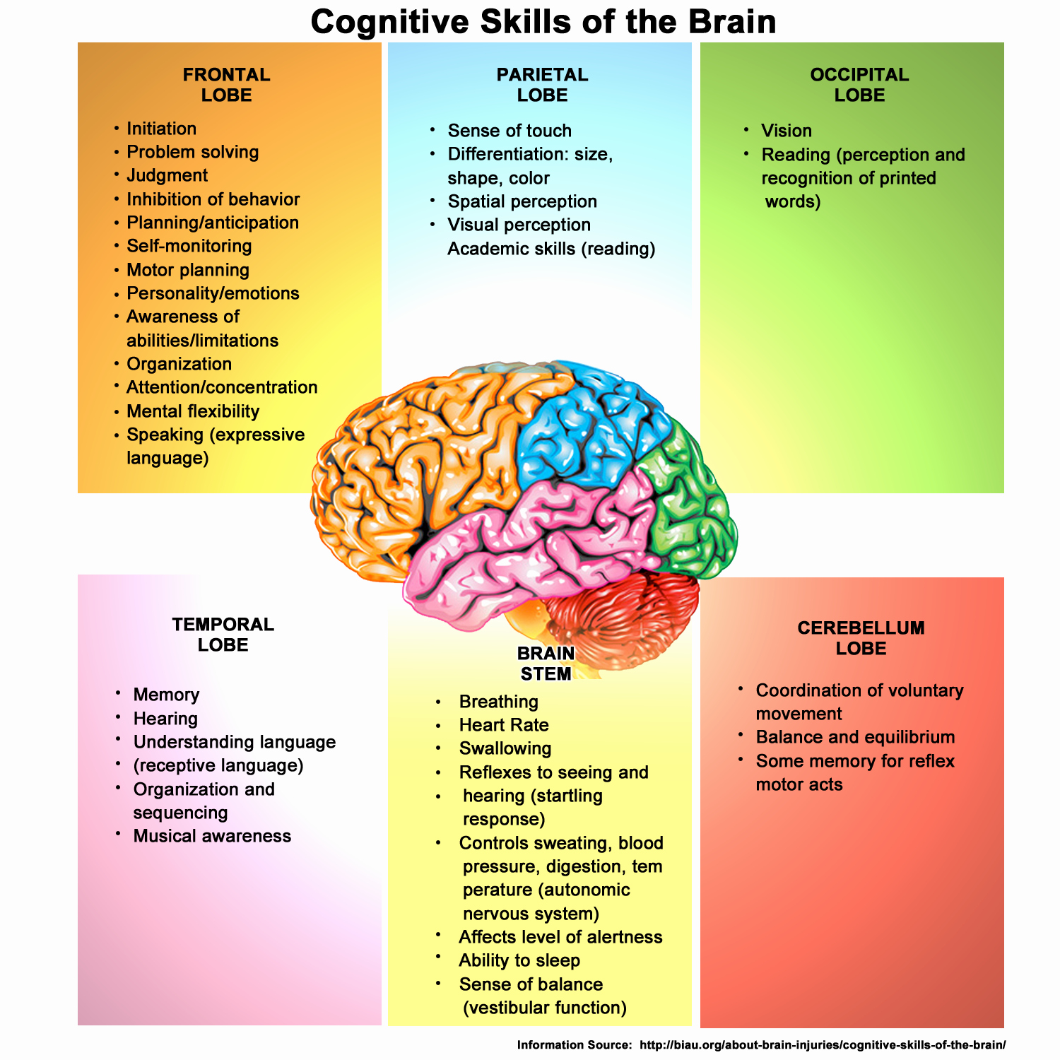 Piaget 4 Stages Of Cognitive Development Chart Beautiful Cognitive Development