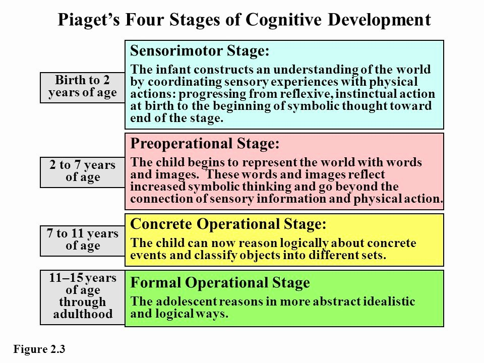 Piaget 4 Stages Of Cognitive Development Chart Fresh Intellectual Development
