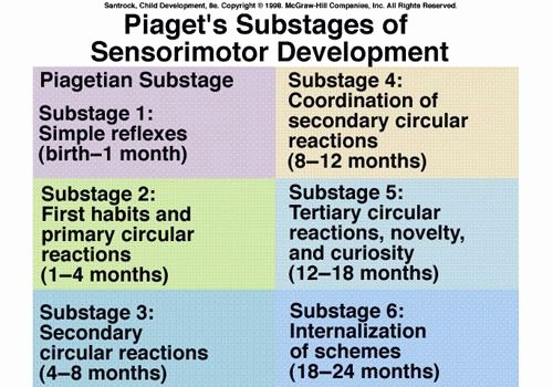Piaget Developmental Stages Chart Beautiful Pia Sensori Motor Stage Of Infant Development Chart