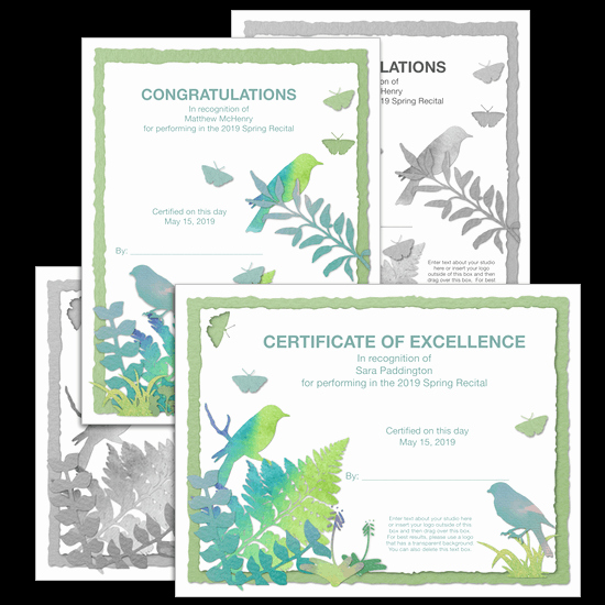 Piano Recital Certificate Template Inspirational Vivaldi Recital Certificates All Text is Pletely Editable