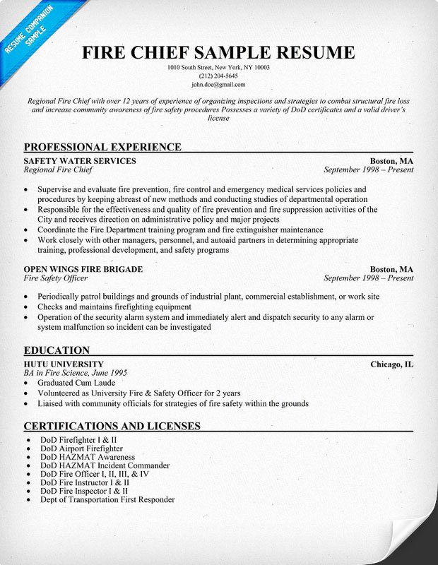 Police Chief Resume Lovely Professional Academic Writers Buy Essays Line Police