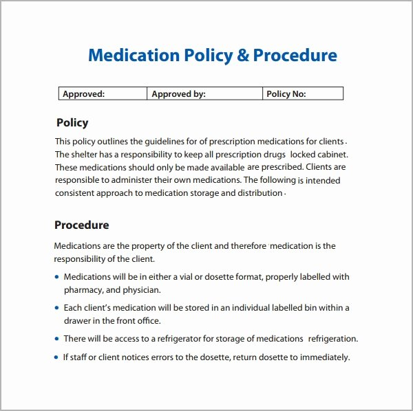 Policy Manual Sample Inspirational Policy and Procedure Template