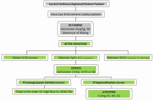 Prehospital Care Report Template New Prehospital Ketamine Protocol Flowchart Im Intramuscul
