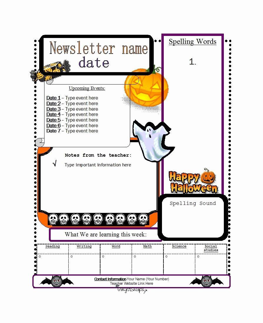 Preschool Newsletter Template Free Unique 50 Creative Preschool Newsletter Templates Tips