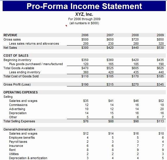 Pro forma Financial Statements Example Elegant Proforma Balance Sheet Template