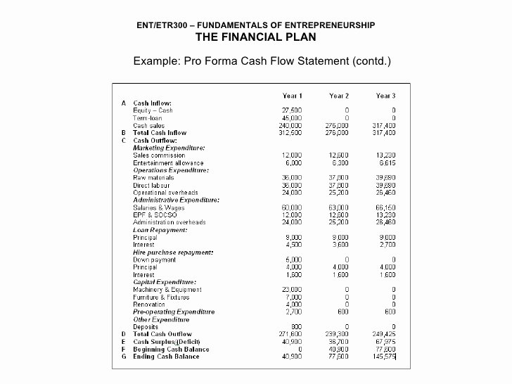 Pro forma Statements Examples Fresh Ent300 Module11
