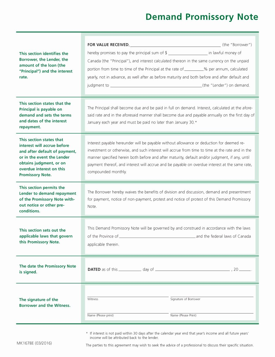 Promise to Pay Contract Best Of 45 Free Promissory Note Templates & forms [word & Pdf]