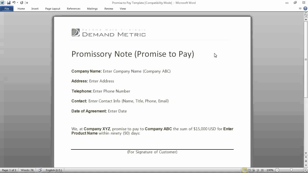 Promise to Pay Contract New Promise to Pay form