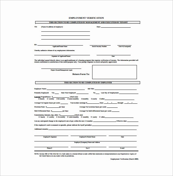 employment authorization form