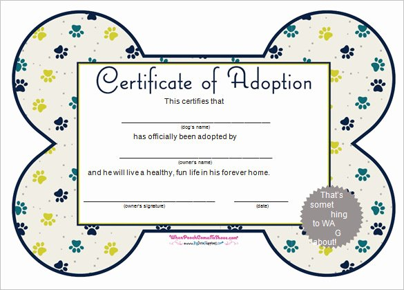 Puppy Adoption Certificate Template Elegant Word Certificate Template 53 Free Download Samples