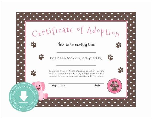 Puppy Adoption Certificate Template Unique 26 Sample Adoption Certificates In Illustrator