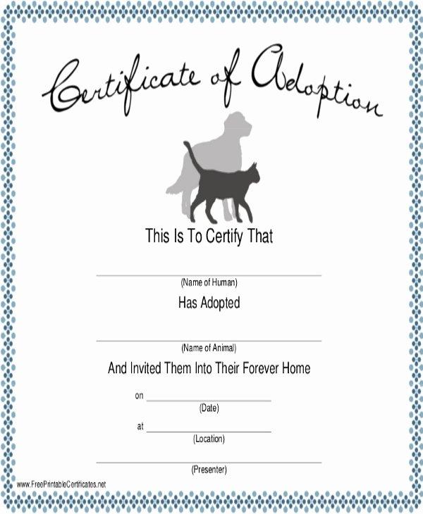Puppy Adoption Certificate Template Unique Dog Certificate Template 13 Pdf Ai Word Psd