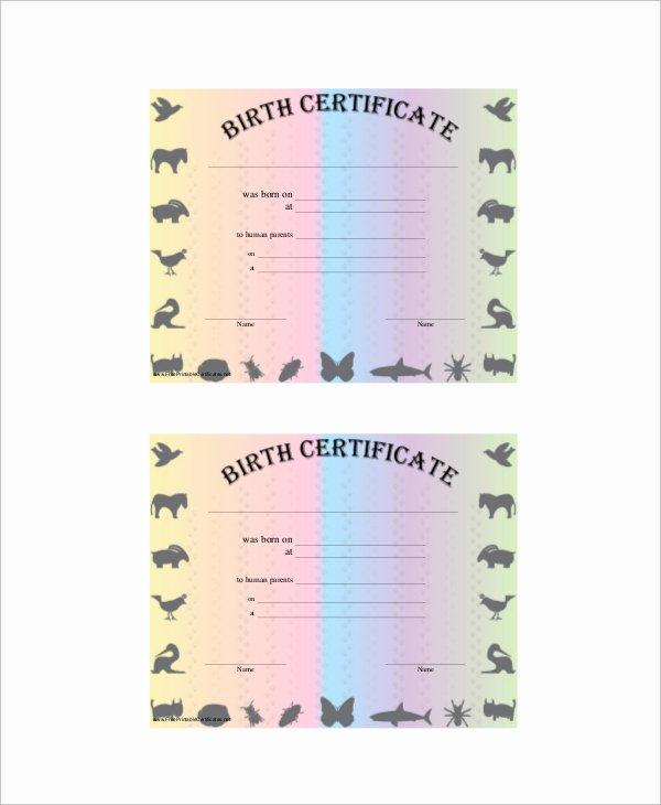 Puppy Birth Certificate Template Elegant Sample Birth Certificate 12 Documents In Word Pdf
