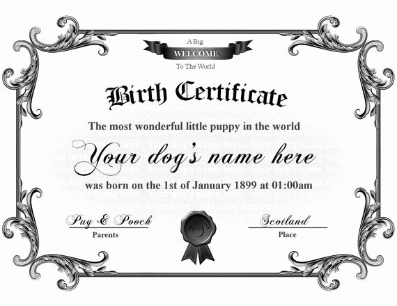 Puppy Birth Certificate Template Free Awesome Puppy Birth Certificate Template Puppy Birth Certificate