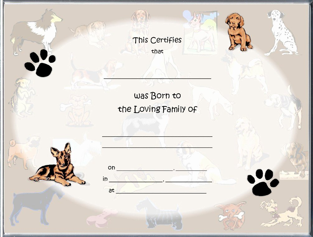 Puppy Birth Certificate Template Inspirational Birth Certificate Blank Printable