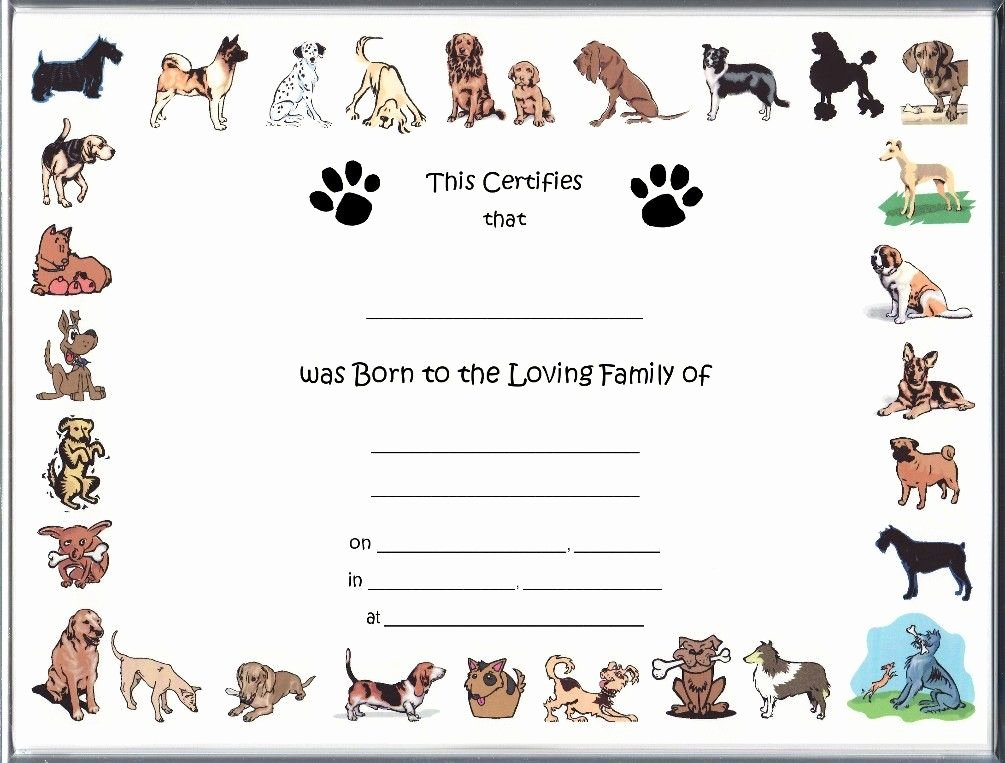 Puppy Birth Certificate Template New Free Pet Birth Certificate Template Puppy Birth