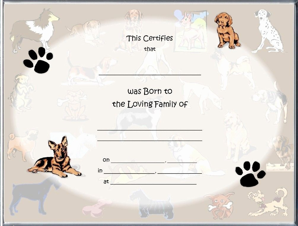 Puppy Birth Certificate Template Unique Pet Birth Certificate