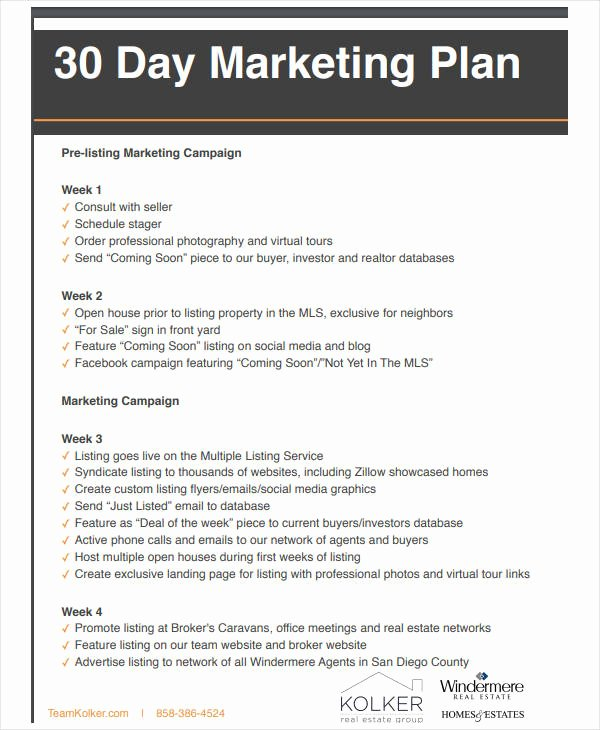 Real Estate Listing Marketing Plan Awesome 11 Basic Real Estate Marketing Plan Templates Pdf Word