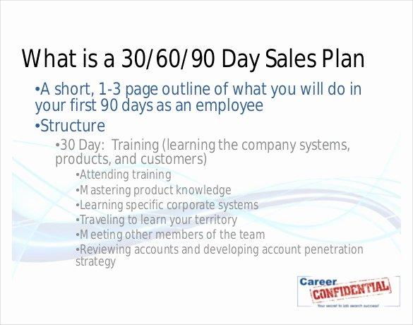 Sales 30 60 90 Plan Sample Luxury 22 30 60 90 Day Action Plan Templates Free Pdf Word