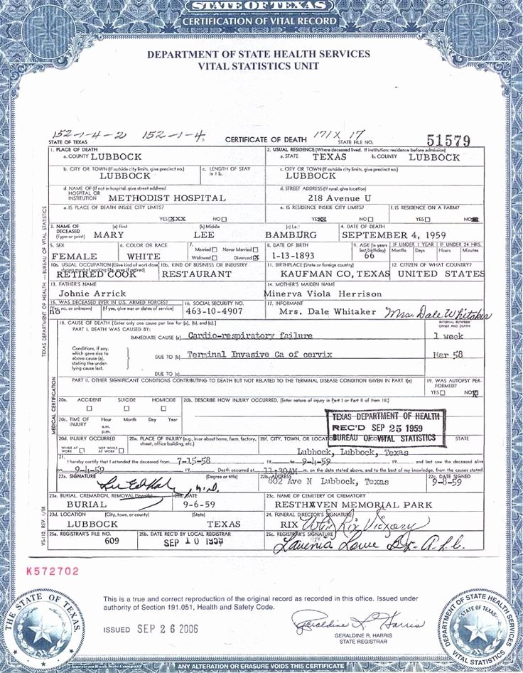 Sample Blank Birth Certificate Fresh Death Certificate Certificate Templates and Death On