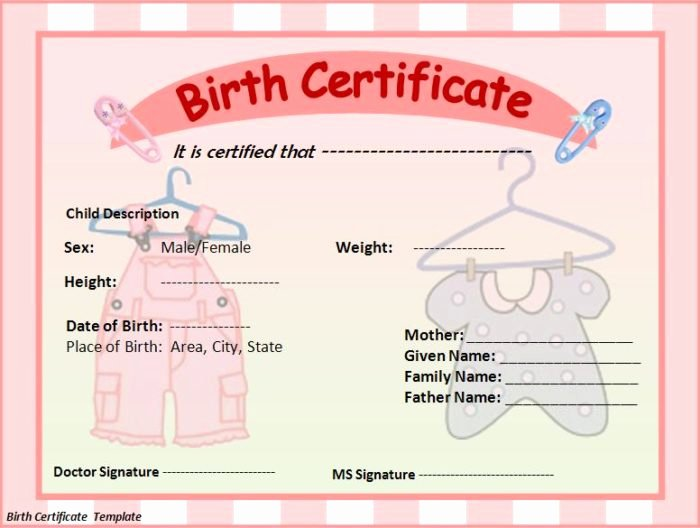 Sample Blank Birth Certificate Lovely Daily Schedule for Kids Easy to Use Daily Schedule