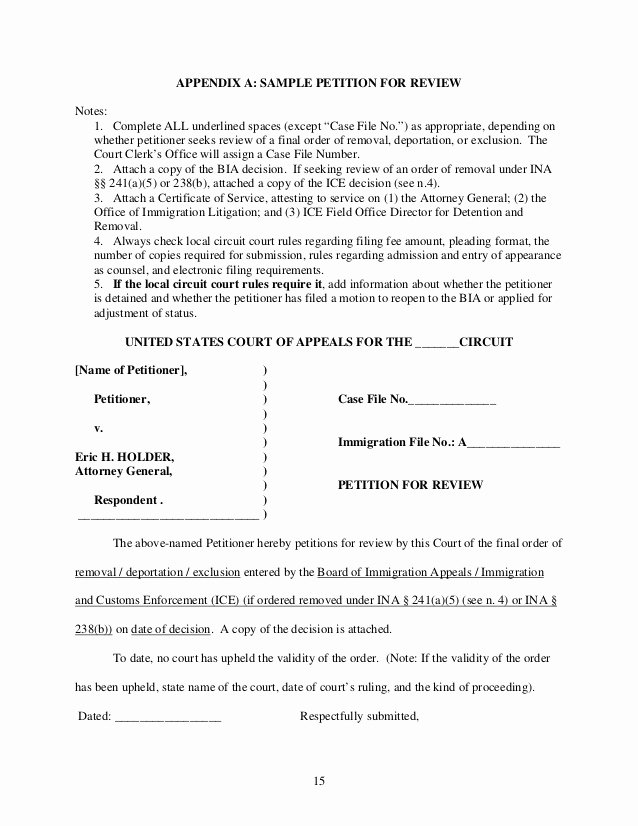 Sample Humanitarian Letter for Immigration Elegant How to File An Immigration Petition for Review