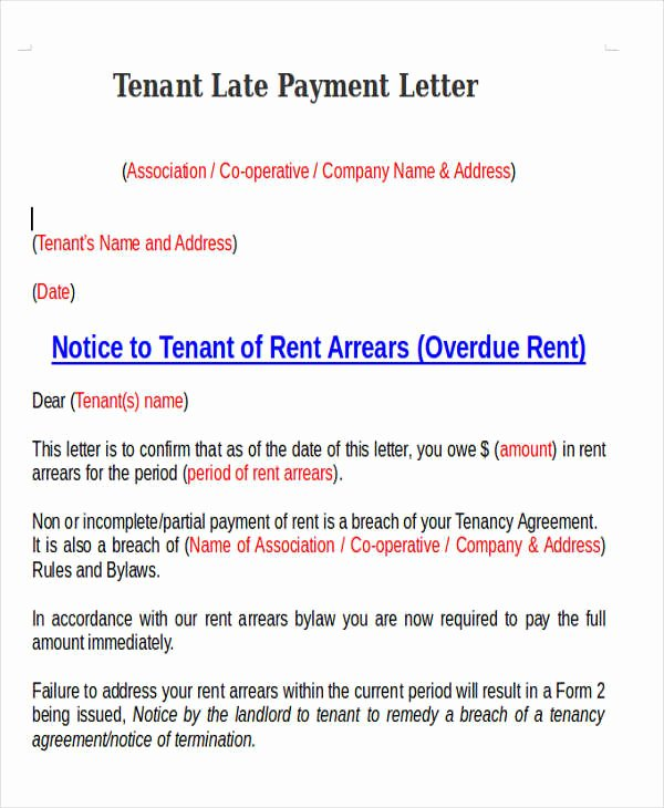 Sample Letter Of Late Payment Explanation Inspirational 11 Late Payment Letter Templates Word Google Docs