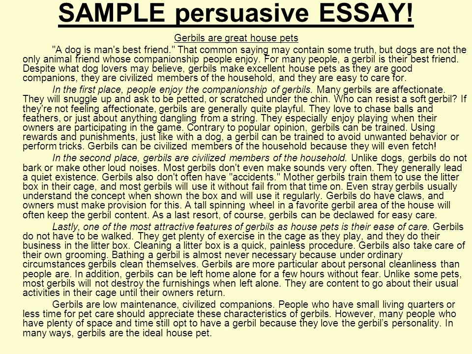Sample Of A Persuasive Speech Luxury What is A Persuasive Essay