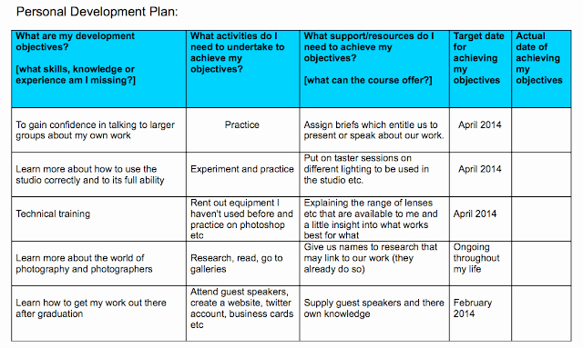 Sample Of Professional Development Plan Beautiful Personal Development Plan Professional Frameworks 3